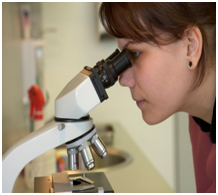 Pathologist examining tissue under a microscope