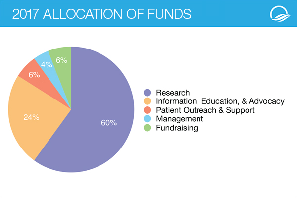 LRG allocation of funds 2017