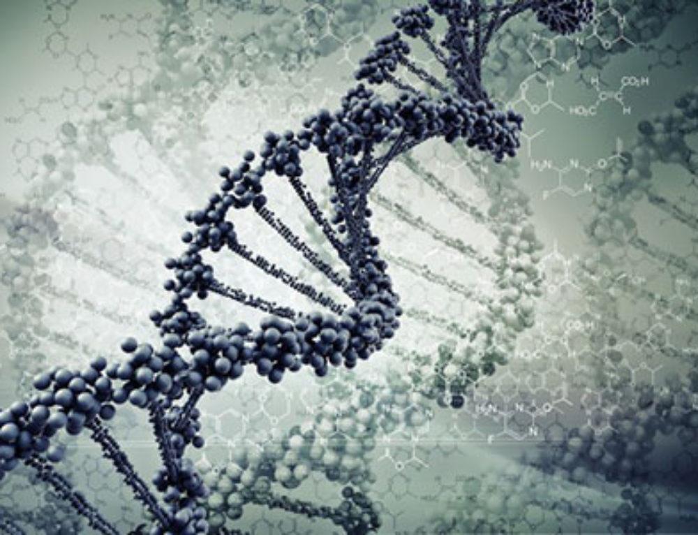 Mutational Testing and Genetics