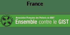 GIST France Logo