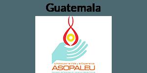 GIST Guatemala Logo