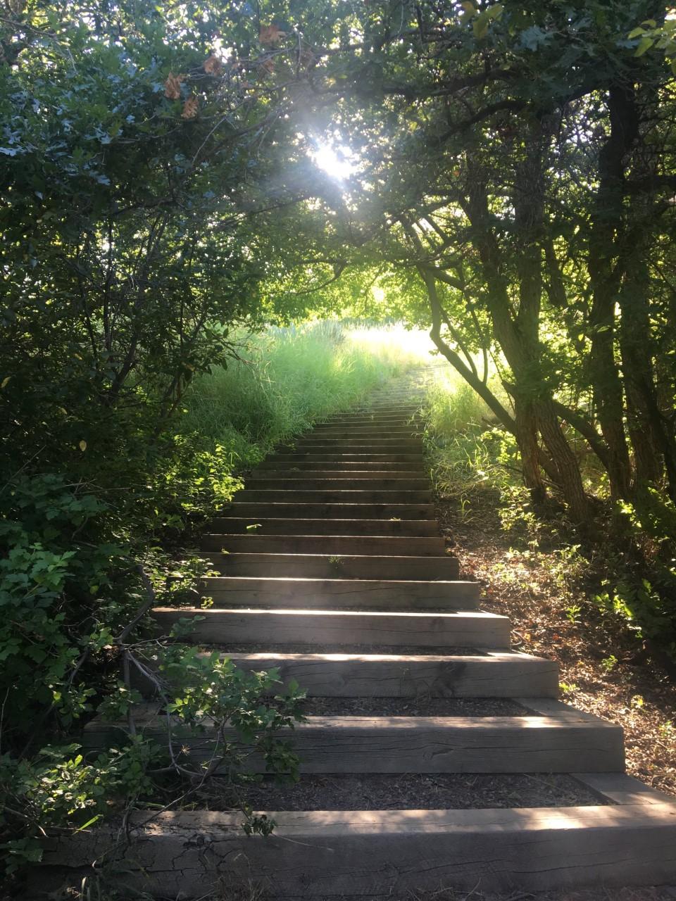 MaKaylas photo of stairs